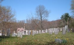 Lower White Hills Cemetery