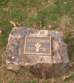 David F Looker