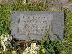 Edwin Bacon Alderson