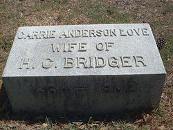Carrie Anderson <i>Love</i> Bridger