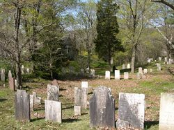 Thirty Mile Island Plantation Burial Yard