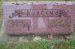 Lester Orrin Burgin