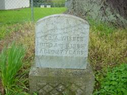 George Albert Wisner