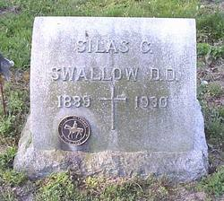 Silas Comfort Swallow