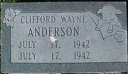 Clifford Wayne Anderson