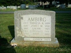 Andrew Ambirg
