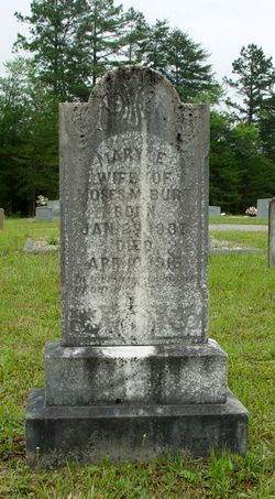 Mary E. <i>Robinson</i> Burt