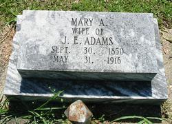 Mary Amanda <i>Minshew</i> Adams