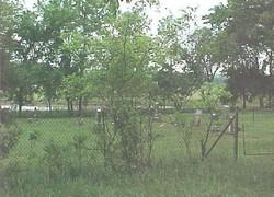 Jane Bryan Cemetery
