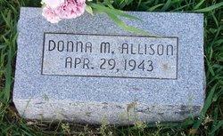 Donna M. Allison