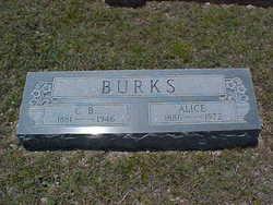 Cornelius Barton Burks, Sr