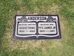 PFC James Anderson, Jr