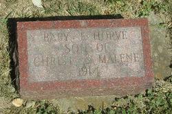 Baby Torvel Horve