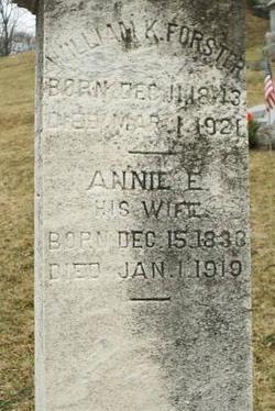 Annie E Forster