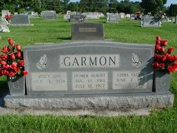 Homer Albert Garmon