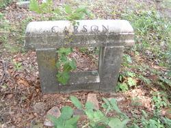 Mary Ann <i>Beaty</i> Carson