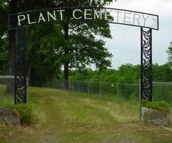 Plant Cemetery
