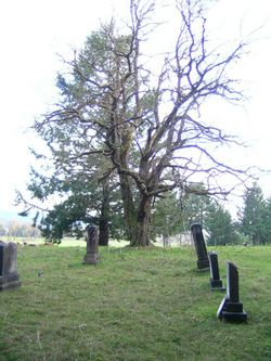 Noah Cemetery