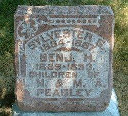 Sylvester G. Peasley