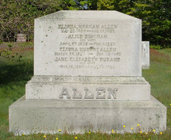 Alice <i>Bingham</i> Allen