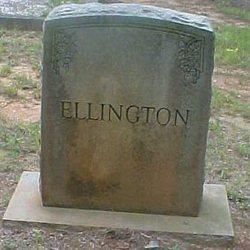 Josie B Ellington