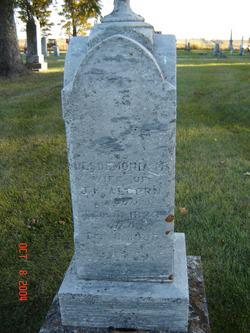 Desdemonia <i>Coolidge</i> Alcorn