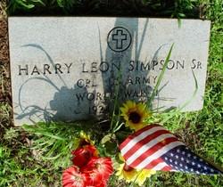 Harry Leon Suitcase Simpson