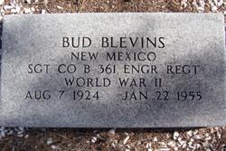 Hugh Bud Blevins