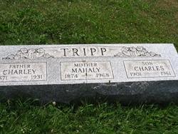 Mary Mahala Haley <i>Wolfe</i> Tripp