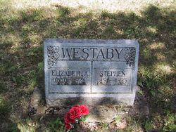 Stephen Westaby