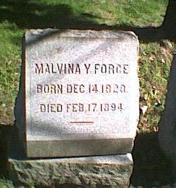 Malvina Y Force