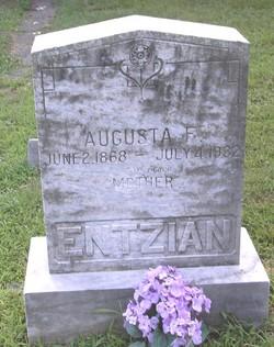 Augusta Friedericke <i>Bauer</i> Entzian