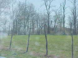 Lewter Cemetery