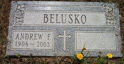 Andrew F. Belusko