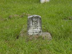 Zelinda M. Ebert