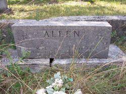 Mary Amanda Polly <i>Camp</i> Allen