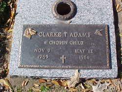 Clarke T Adams
