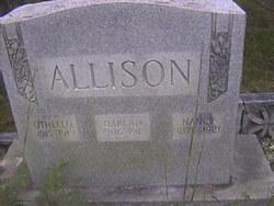 Nancy <i>Cook</i> Allison