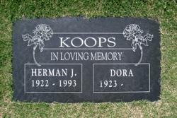 Herman John Koops