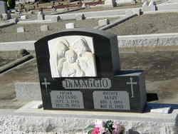 Michael DiMaggio