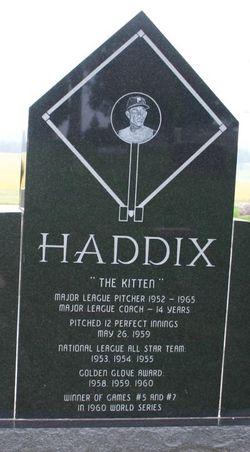 Harvey The Kitten Haddix