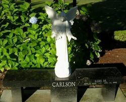 Lois M Carlson