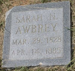 Sarah N Awbrey