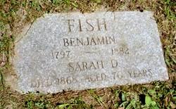 Sarah D Fish