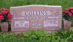 Dean Paris Collins