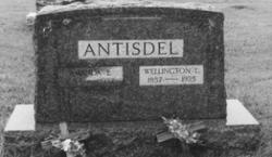 Amanda Lucinda <i>White</i> Antisdel