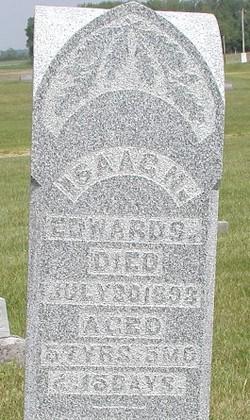 Isaac Newton Edwards