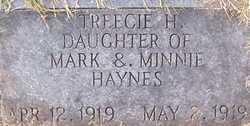 Treecie H. Haynes
