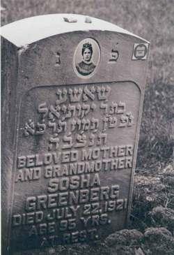 Socha Greenberg