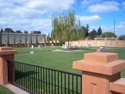 Beth David Memorial Garden